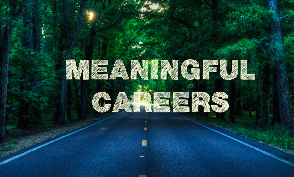 meaningful career